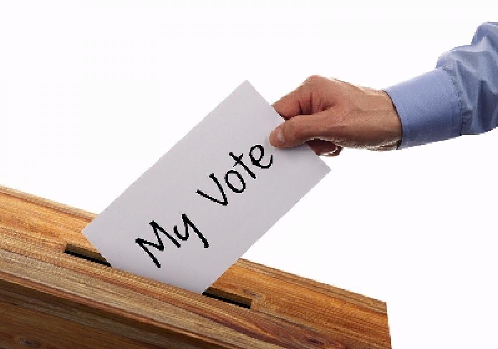 BOARD ELECTIONS 2019