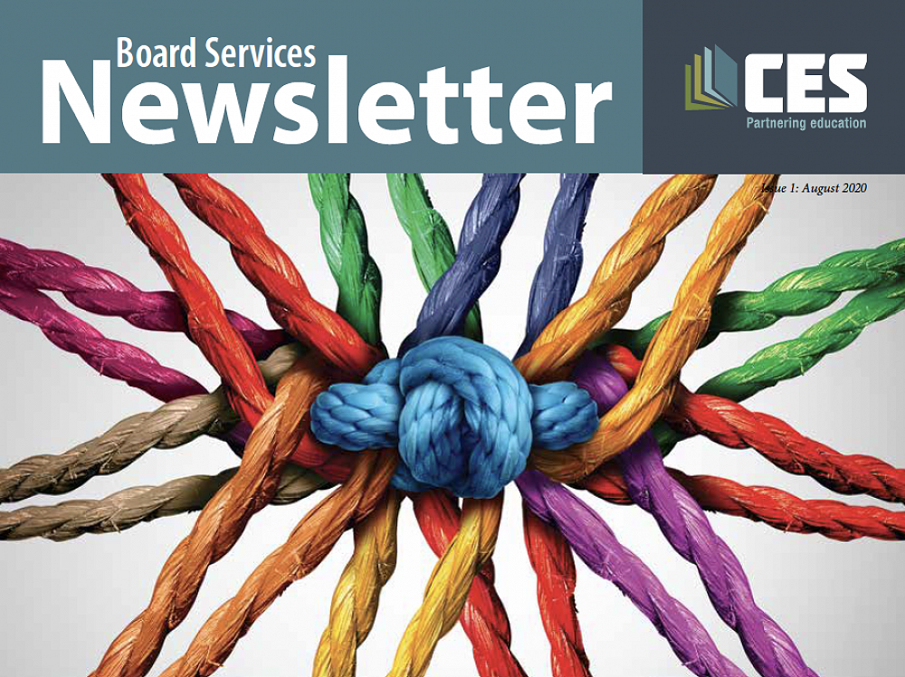 Welcome to the first issue of the Board Services Newsletter